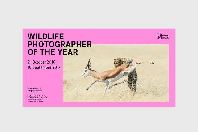 Wildlife Photographer of the Year proposal poster, design by Praline